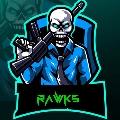 @rawks_skins