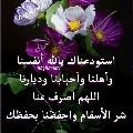 Mohamed shiref