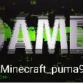 Minecraft_Puma9