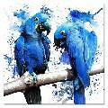 Blue_UwU