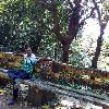 Manas Kumar Pradhan