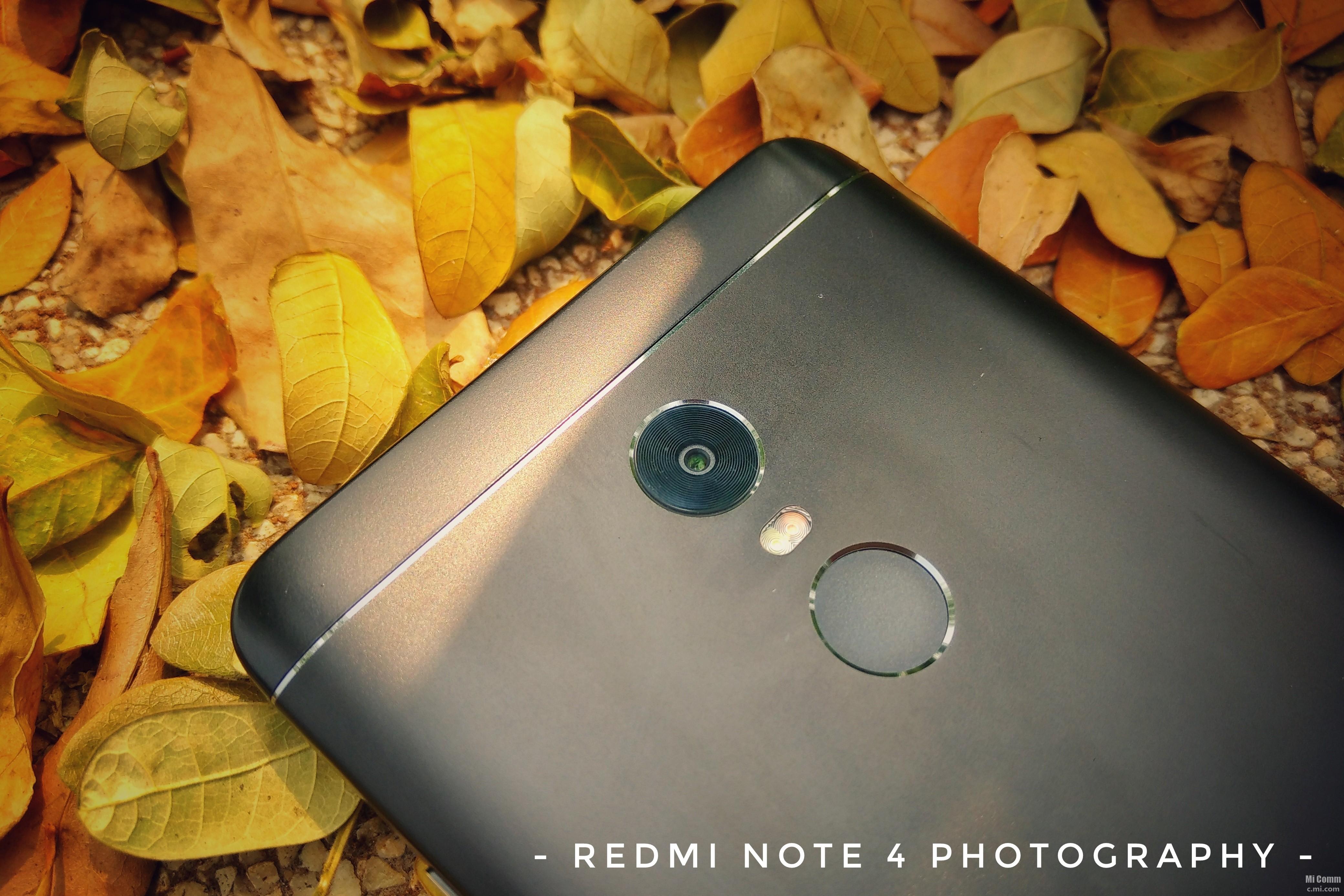 Kumpulan Hasil Foto Redmi Note 4