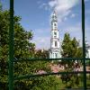 Artem_rax
