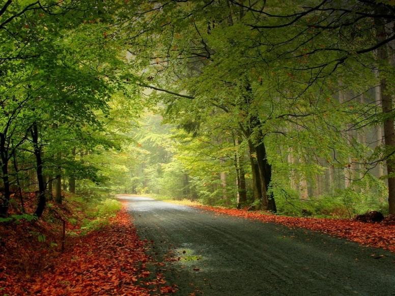 Обучаемся пейзажной фотографии