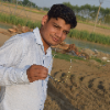 RV Raman Verma