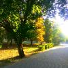 Andrey_Moralez