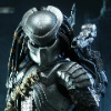 Predator_73
