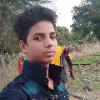 Tulsi choudhary