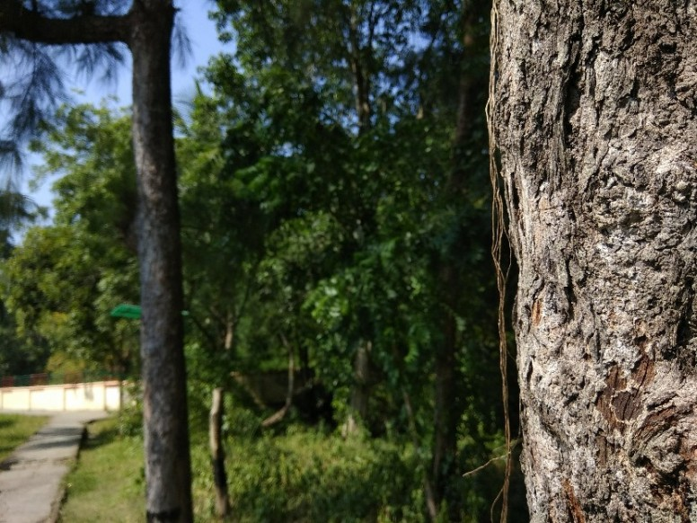 Dslr Background Redmi Note 4 Mi Community Xiaomi