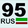alleroi95