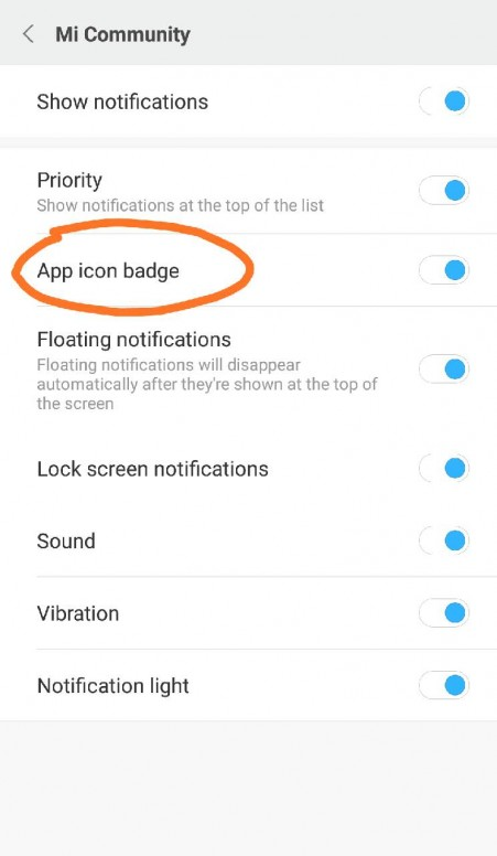 May i know what is 'app icon badge' for? - MIUI Features