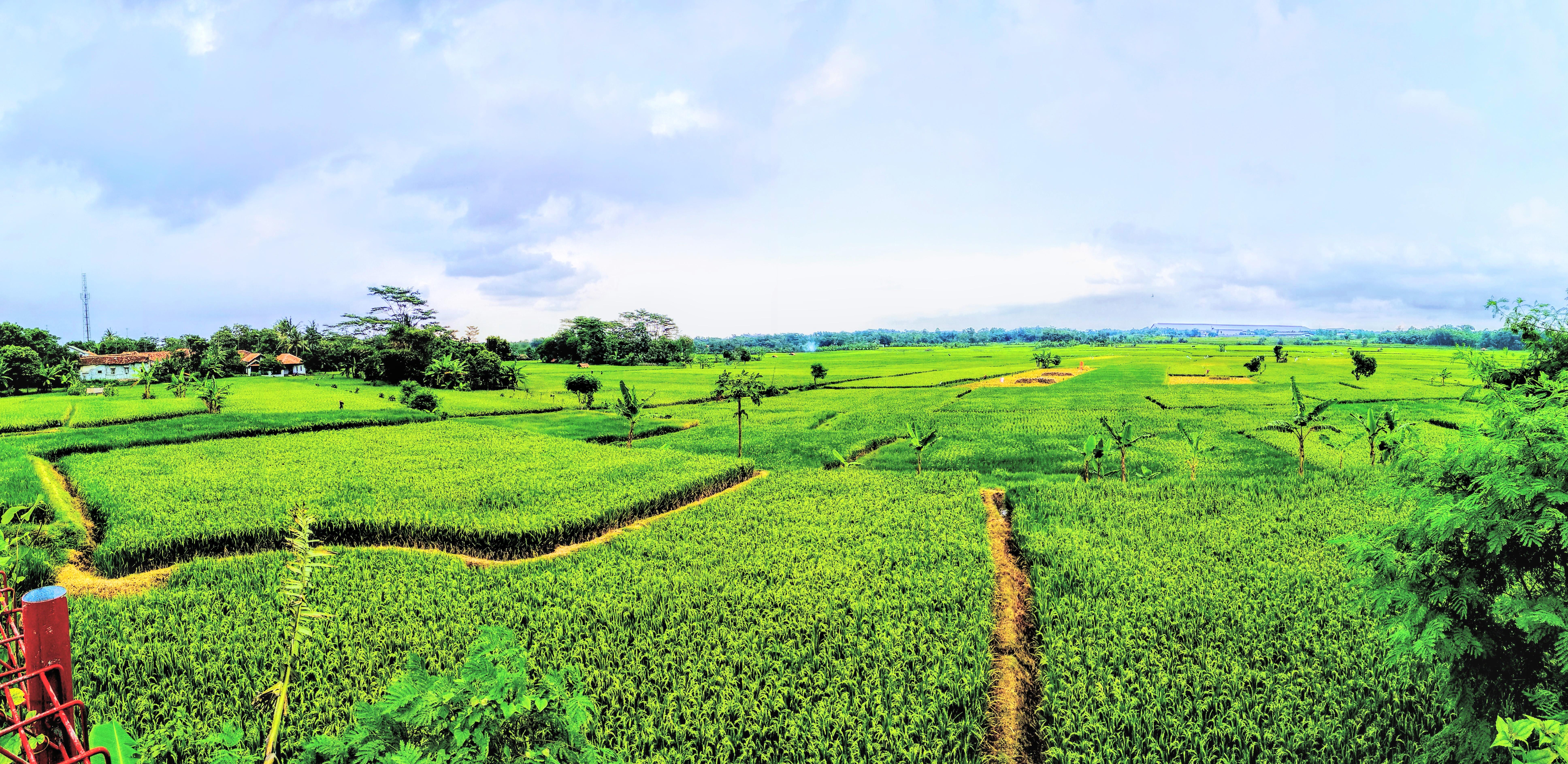 Kekayaan Alam Indonesia Fotografi Mi Community Xiaomi