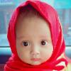 Rezha afan