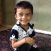 D B Shaikh