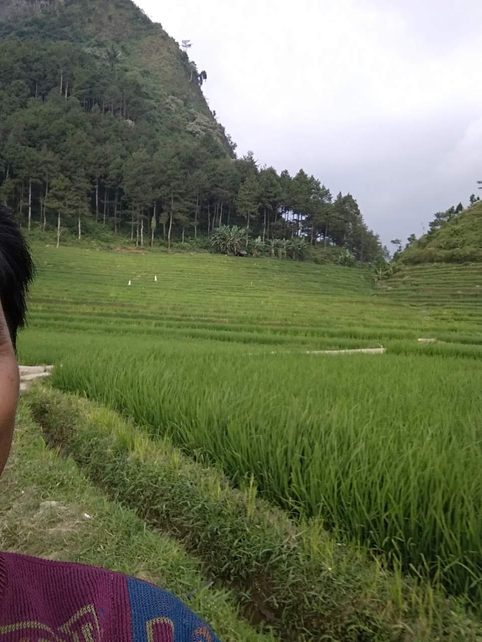 Pemandangan Gunung Fotografi Mi Community Xiaomi