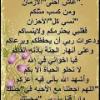 saelh1839303468