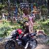 Dedi_Setyawan