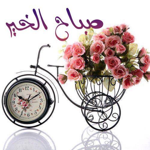 صباح الخير على كل عائلة شاومى جمهورية مصر العربية Mi Community Xiaomi