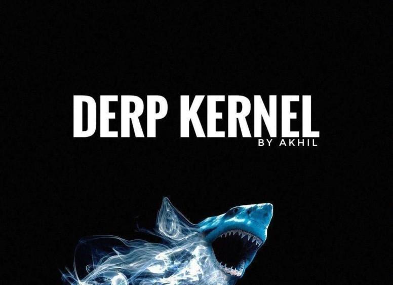 DERP KERNEL 2 6 | CUSTOM ROMs By Akhilnarang [Whyred