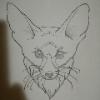 Evil_Wild_Fox