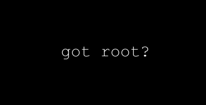 Kuasha'S Diary Volume 1 : What Is Root ??? - POCOPHONE F1