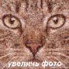 Kozma_Prutkov