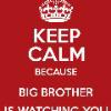 Big Brother134
