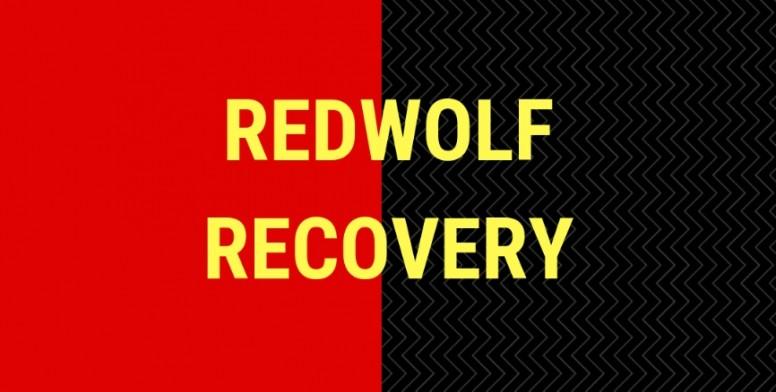 REDWOLF-3 2-3-BETA V27-OFFICIAL UPDATE [ 01 20 19 ] - Redmi