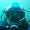 Ouistiti Diver