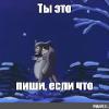 zhyvchik
