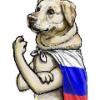Буковкин