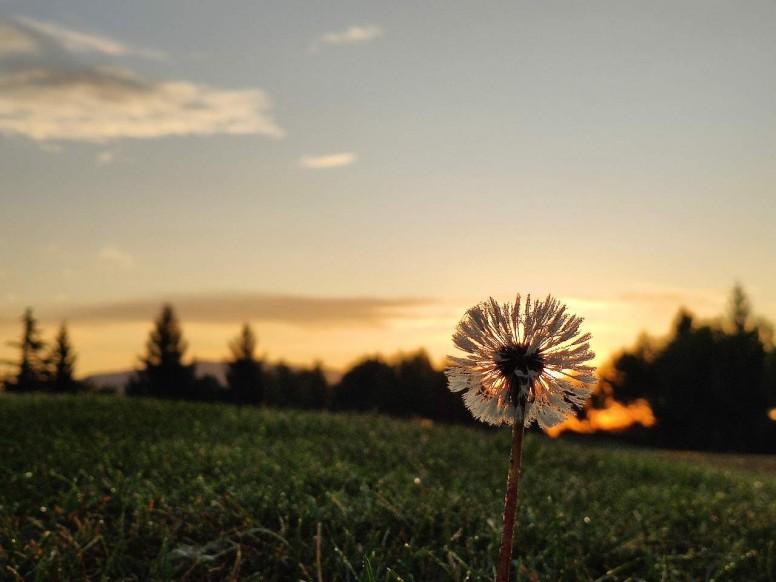 Fotografías al amanecer