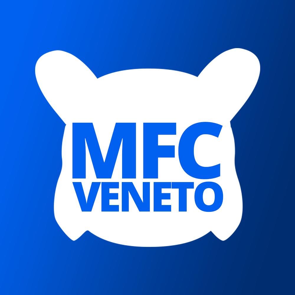 14. Veneto